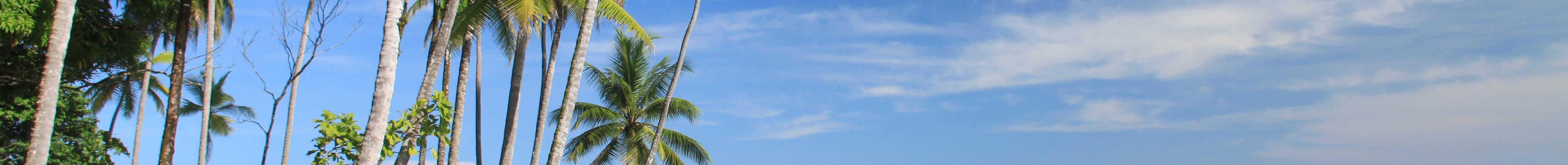Corcovado, Drake Bay